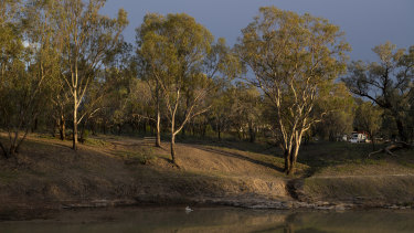 The drought affected Darling River near Bourke, in north-western NSW, November 2019.