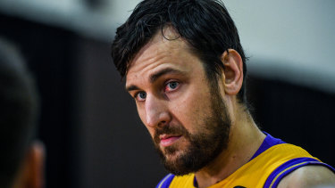 Sydney Kings' Andrew Bogut will be coming to free-to-air screens this season.