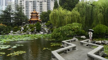 Rain falls at the Chinese Garden of Friendship in Darling Harbour on Saturday.