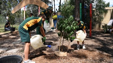 Students from Mary Immaculate Parish Primary School in Eagle Vale plant trees.