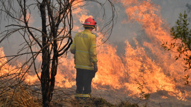 Four homes have been destroyed in Drake, as bushfires continue to blaze across the state.