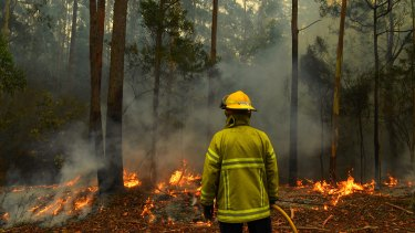 The Morrison government will review emergency medical response systems after the bushfires.