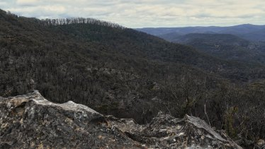 A view of the Blue Mountains area scorched by the bushfires taken from Du Faurs Rocks at Mount Wilson.