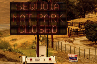 The Sequoia National Park has been closed as fires threaten the area.