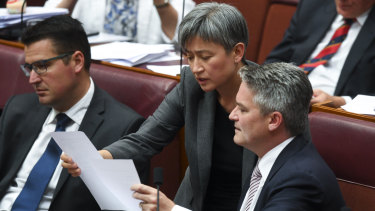 Labor's Penny Wong and the Coalition's Mathias Cormann consider a vote in the Senate.
