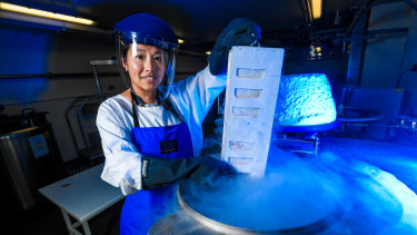 The Doherty Institute's Dr Thi Hoang Oanh Nguyen, one of the researchers on the study team, with frozen human flu samples.