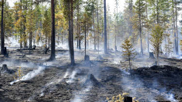 An Alvdalen field in Sarna, central Sweden, burns in July.