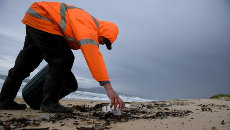 Clean up contractor Lucus Towell clears debris from the beach at Hawks Nest near Port Stephens, north of Newcastle, on Tuesday.