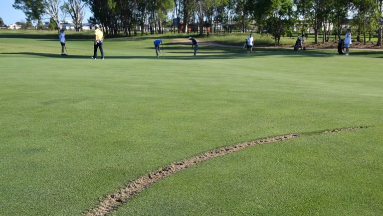 Damage: the skid mark left on the back of the 16th green during the first round of the NSW Open at Twin Creeks Golf and Country Club.