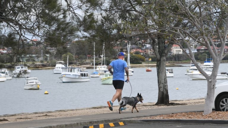 The Bay Run is a popular route for dogwalkers.