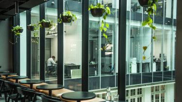 The private cafe at Hub Australia's premises at Custom's House.