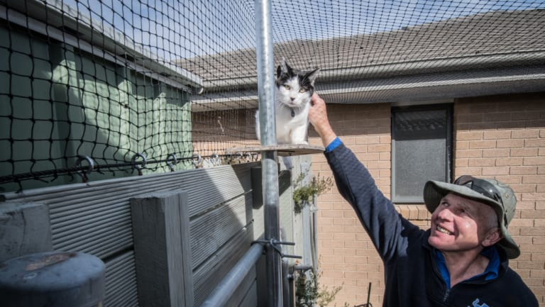 Thomas Graham, who says he's installing more cat containment spaces in older suburbs where laws about roaming cats aren't in place.
