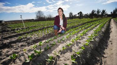 Tash Shields on Peninsula Fresh Organics' farm in Baxter.