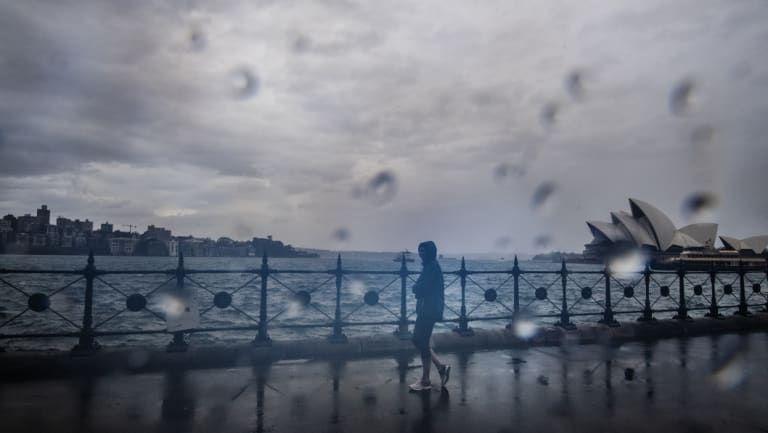 Sydney received more than 118 millimetres of rain on Wednesday.