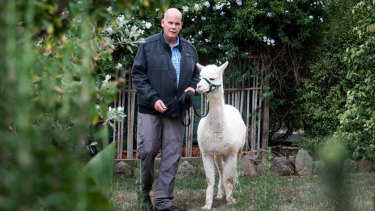 Nils Lantzke at home in Giralang on Wednesday with surviving alpaca Hercules.