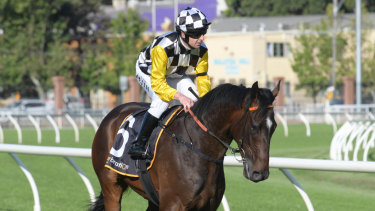 On the up: Christian Reith returns wearing a black armband on Sky Boy a fortnight ago.