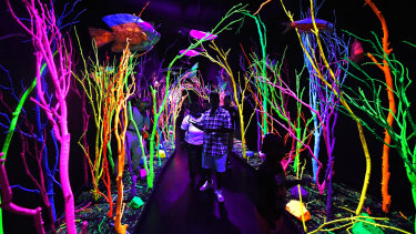 The Glowquarium installation at the House of Eternal Return, housed inside an old bowling alley.
