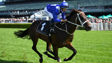 The Queen Elizabeth Stakes will be Winx's last race.