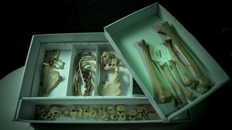 The bones were donated to Sacred Heart's Prahran opportunity shop.