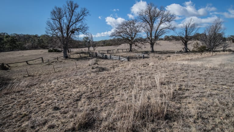 Drought could lead to more gastro cases.