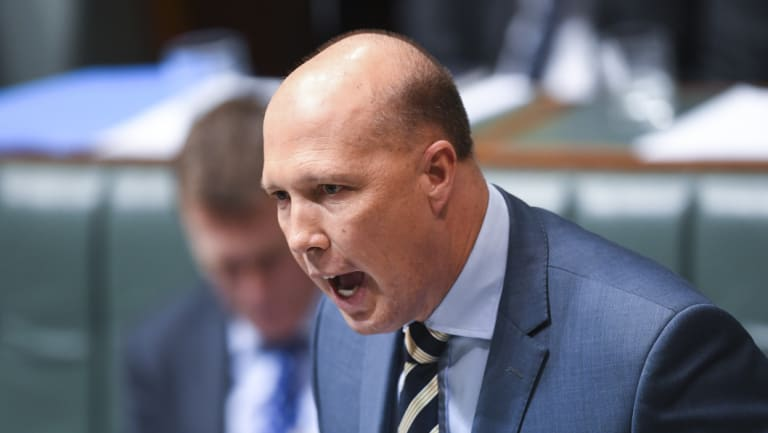 Home Affairs Minister Peter Dutton is being touted as a Coalition leader.
