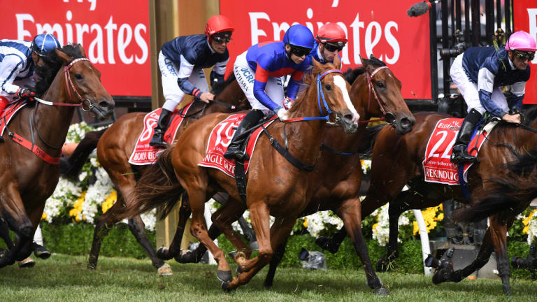 Single Gaze is 27th in the Melbourne Cup order of entry, but her racing future is up in the air.
