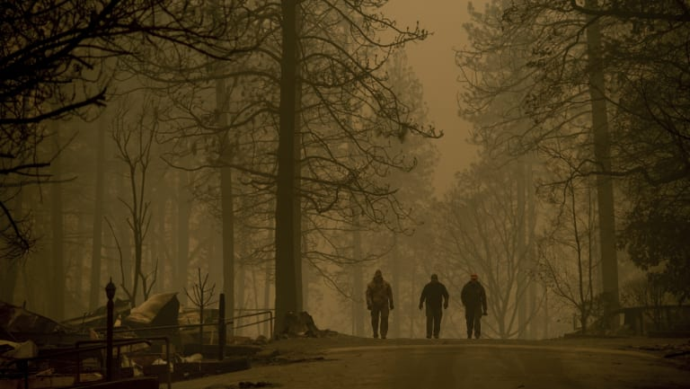 Sheriff's deputies search for human remains in a neighborhood destroyed by the Camp Fire.