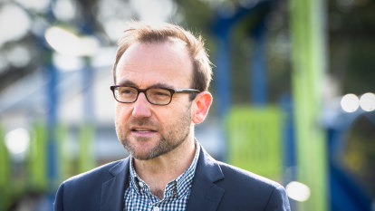 Greens name price to share power with Labor, take swipe at its diversity woes
