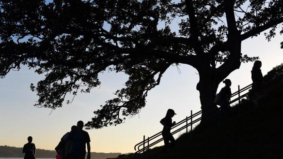 Sydney's gardens add $320m to city's wealth each year