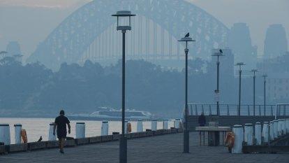 Sydney's endless autumn is curbing bushfire prevention