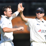 Strike force: James Pattinson and Peter Siddle celebrate a wicker for the Bushrangers against South Australia last week.