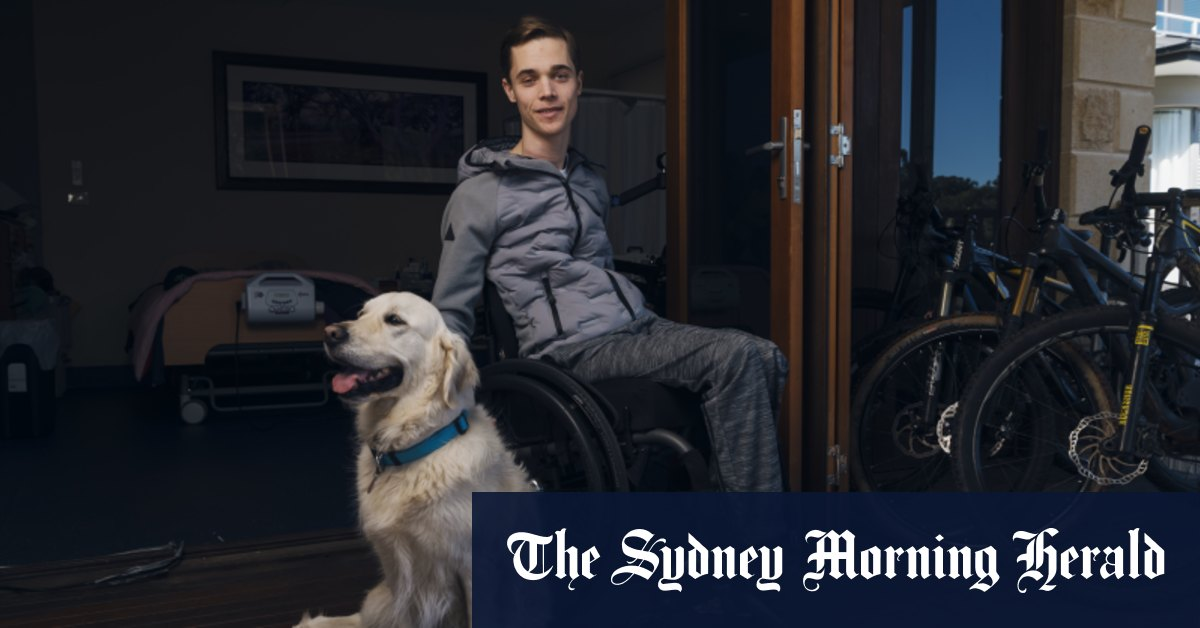 While Alex's mates were studying for the HSC he was learning to breathe again – Sydney Morning Herald