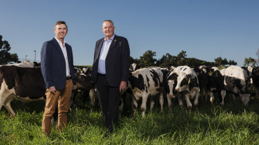 Tony Perich (right) and his son Mark Perich at their dairy farm at Bringelly, which is next to the site of the new airport.