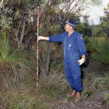 Former forensic supervisor Robert Hemelaar measuring where tree branches had been ripped off near where Ciara's body was found.