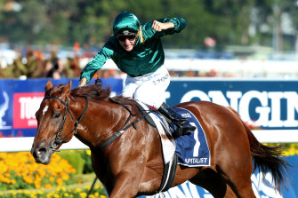 Capitalist, son of Written Tycoon, powers home to win the Golden Slipper at Rosehill in 2016.