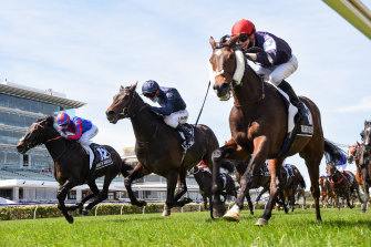 Crowds could return to the Melbourne Cup this year.