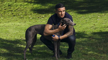 Blue is my colour: Tim Cahill with Luna Moana, his adopted blue greyhound.