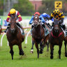 Higher and Hyeronimus: Adam gets first group 1 on Shout The Bar