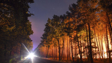 A forest is light by wildfires near the village Klausdorf, near Berlin.