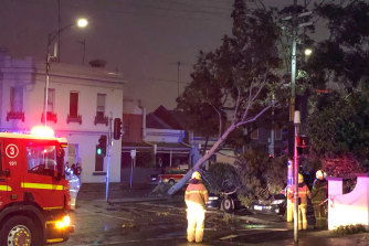 The wild weather brought a tree down on the corner of Spencer and Hawke streets in Melbourne's north.