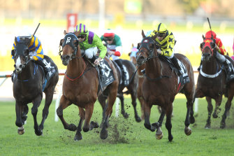 A seven-race card wraps up the racing week in Muswellbrook.