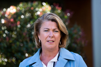 NSW Water Minister Melinda Pavey has been pushing for changes to the rules on flood plain harvesting.
