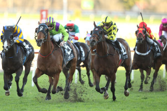 A seven-race card is scheduled for Tamworth on Tuesday, with a host of Scone gallopers.