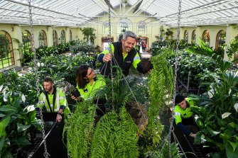 Horticultural asset supervisor Sam Davis preparing the tropical display with his team at the conservatory.