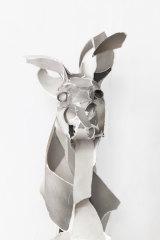Highfield's Kangaroo, 2015.