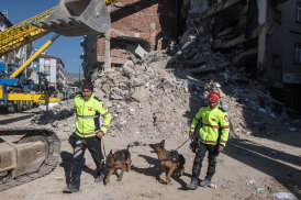 Rescue dogs are being used to search collapsed buildings for survivors.