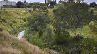 The Merri Creek in Fawkner with the site in the background.
