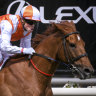Inside Running: Stars on show for Easter Saturday at Caulfield