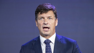 Energy Minister Angus Taylor at the Summit.