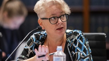 Labor MP Penny Sharpe.